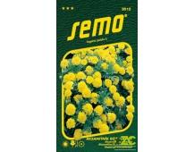 Aksamitník rozkladitý - Lemon drop 1g