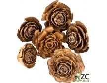 Dekorace - Cedar rose 3-5 cm 6 ks