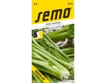 Celer řapíkatý - Merlin 0,4g