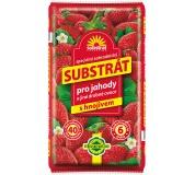 Substrát Forestina - Jahody a drobné ovoce 40 l