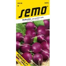 Ředkvička fialová - Purpura F1 rychl,pole 1,5g