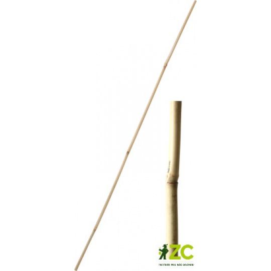 Tyč bambusová 180 cm tl. 22-24 mm