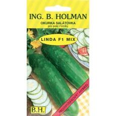 Okurka salát. Holman - Linda F1 1,5g