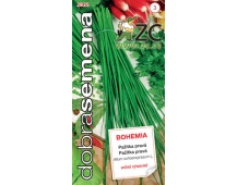 Dobrá semena Pažitka - Bohemia 2g