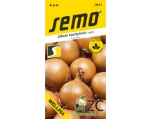 Cibule jarní - Wellina žlutá 2g