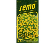 Aksamitník drobnokvětý - žlutý 0,2g