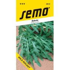 Roketa setá - Wild Rocket - Diplotaxis tenuifolia 1,2g
