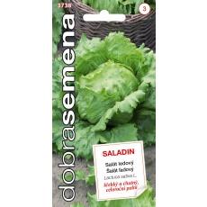 Dobrá semena Salát celoroční ledový - Saladin 0,6g