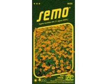 Aksamitník drobnokvětý - oranžový 0,2g
