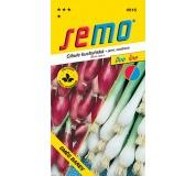 Cibule jarní - směs svazková (žlutá, červená) 2g - série DUO