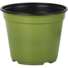 Kontejner Desch 14 cm - zelený