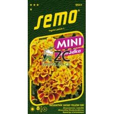 Aksamitník rozkladitý - Safari Yellow Fire 30s - série MINI